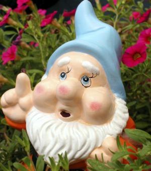 GARDEN GNOME ©Cammeraydave