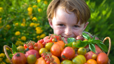 Kid with tomatoes